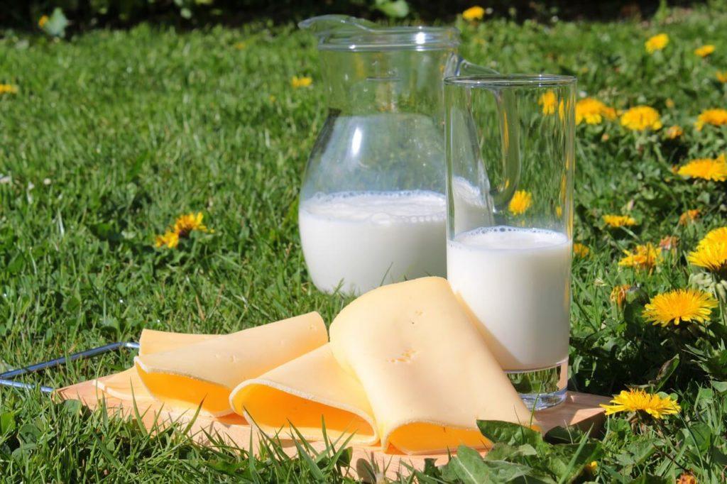Lebensmittel mit Kalzium bei Kalziummangel